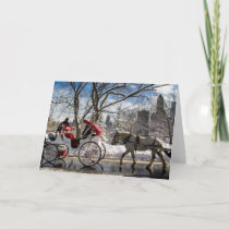 Central Park Carriage Horses Holiday Card