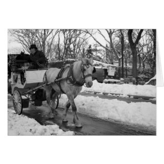 Central Park Carriage Ride Holiday Card