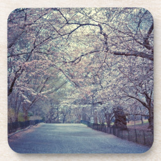 Central Park Cherry Blossom Path Drink Coaster