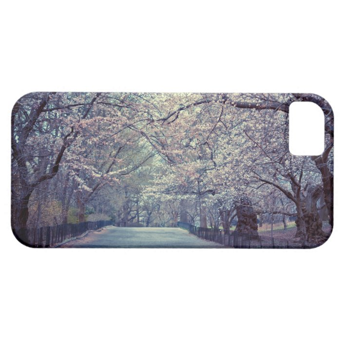 Central Park Cherry Blossom Path iPhone SE/5/5s Case