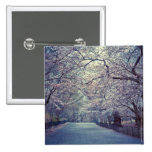 Central Park Cherry Blossom Path Pinback Buttons