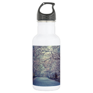 Central Park Cherry Blossom Path Stainless Steel Water Bottle