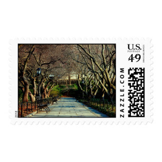 Central Park Conservatory Landscape Photo Stamp