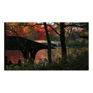 Central Park: Conversation Across From Bow Bridge Double-Sided Standard Business Cards (Pack Of 100)