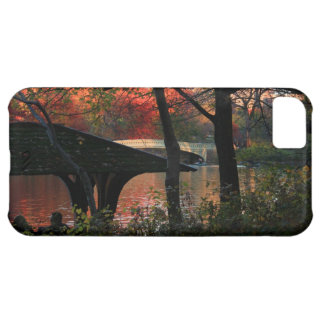 Central Park: Conversation Across From Bow Bridge Cover For iPhone 5C