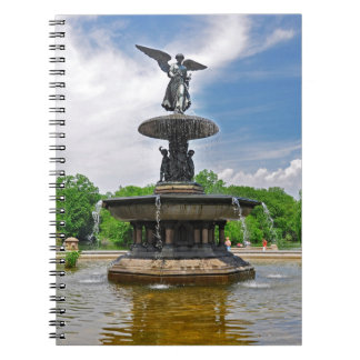 """""""Central Park de la terraza de Bethesda"""", NY Notebook"""