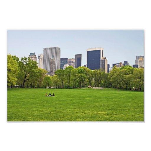 """""""Central Park del prado de las ovejas de la primav Fotos"""