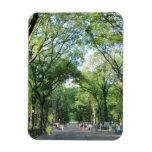 Central Park: El paseo del poeta en el verano Imán