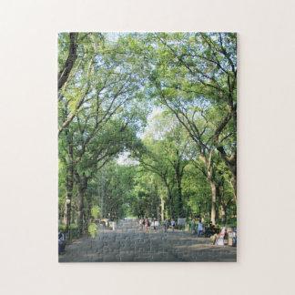 Central Park: El paseo del poeta en el verano Puzzle Con Fotos