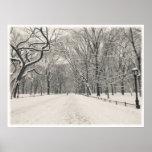 Central Park - el paseo del poeta - New York City Poster