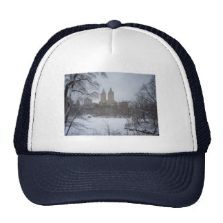 Central Park en invierno, a través de los árboles Gorro