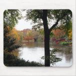 Central Park en la caída Mousepad Tapetes De Ratones