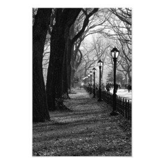 Central Park en New York City Fotografía
