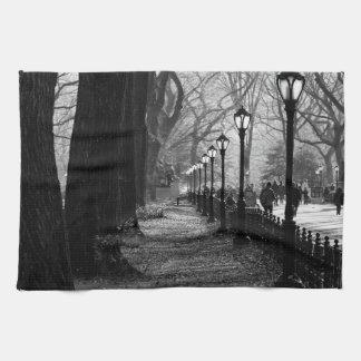 Central Park en New York City Toalla De Cocina