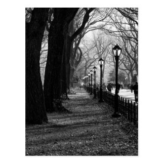 Central Park en New York City Postal