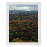 Central Park Fall Posters