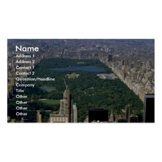 Central Park from the south, New York City, USA Double-Sided Standard Business Cards (Pack Of 100)