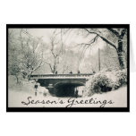 central park holiday greetings greeting card