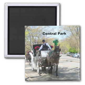 Central Park, Horse and Carriage 2 Inch Square Magnet