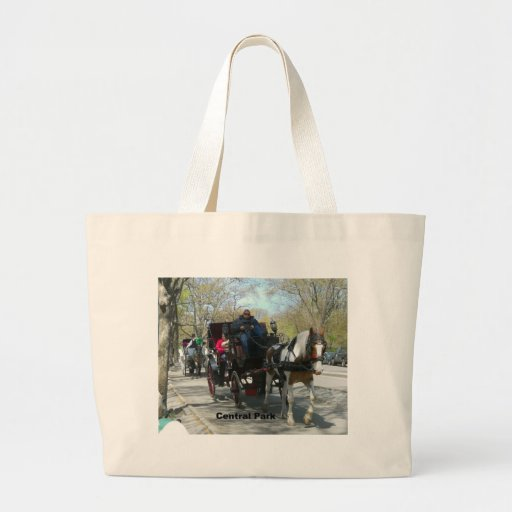 Central Park, Horse and Carriage Canvas Bags