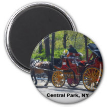 Central Park, Horse and Carriage Magnet