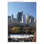 Central Park Ice Rink Greeting Cards
