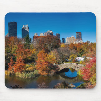 Central park in autumn foliage New York Mouse Pad