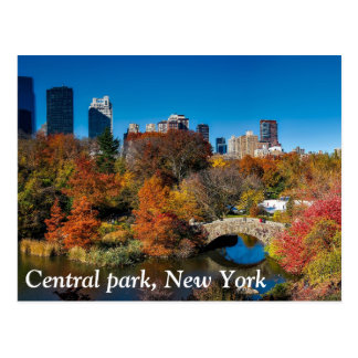 Central park in autumn foliage New York Postcard