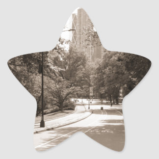 Central Park in New York City during the summer. Star Sticker