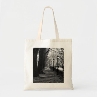 Central Park in New York City Tote Bag