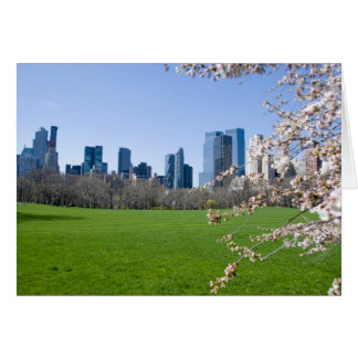 Central Park in Spring - NYC Card