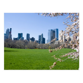 Central Park in Spring - NYC Postcards