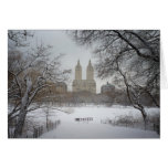 Central Park in the Snow, New York City Card