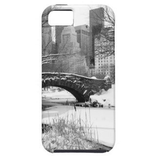 Central Park in Winter iPhone SE/5/5s Case