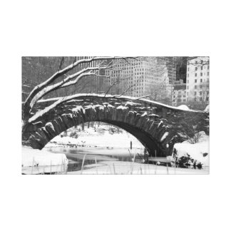 Central Park in Winter, New York City Canvas Print