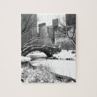 Central Park in Winter Puzzles