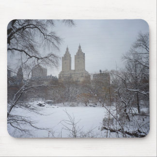 Central Park in Winter, Through the Trees Mouse Pad