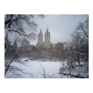 Central Park in Winter, Through the Trees Postcard