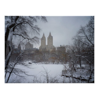 Central Park in Winter, Through Trees, All Sizes Print