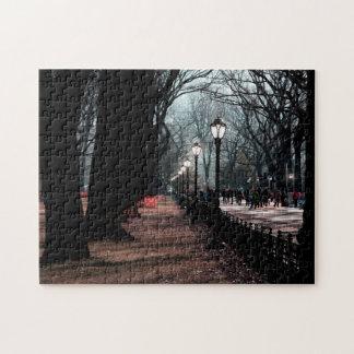Central Park Landscape Lampposts Photo Jigsaw Puzzles