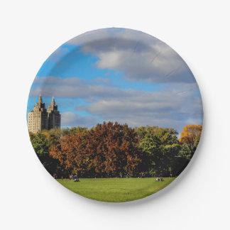 Central Park Landscape Photo Paper Plate