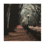 Central Park Landscape Photo Wood Print