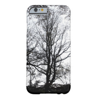 Central Park late autumn almost Barren Tree B&W Barely There iPhone 6 Case