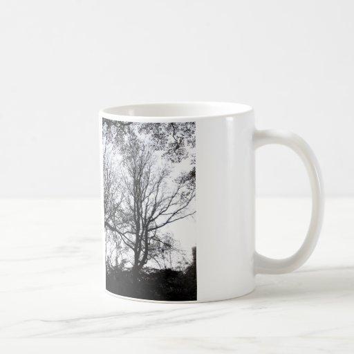 Central Park late autumn almost Barren Tree B&W Coffee Mug