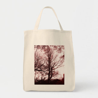 Central Park late autumn, Almost Barren Tree Red Tote Bag