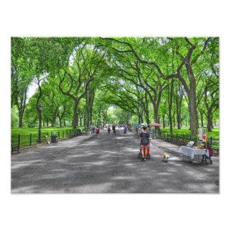 Central Park literario del paseo, Nueva York Fotografía