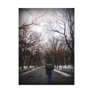 Central Park Lona Estirada Galerias