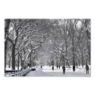 Central Park Mall Winter Scene Photo Print