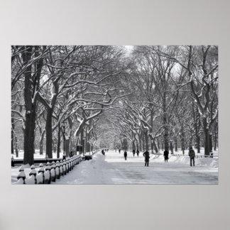 Central Park Mall Winter Scene Poster