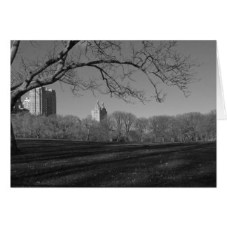 Central Park Meadow Note Card